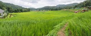 doi inthanon - thailande 66