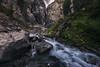 Three Cascades (Manuel.Martin_72) Tags: graubünden swissalps switzerland darkmood gorge grass green flowers rocks stones treetrump trees river water waterfall cascade cloudy morning ch