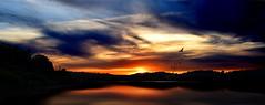 Sunset (vestergaards Amatørfotografi) Tags: sunset denmark sun sundown lake nature wildlife birds colours hdr nikon nikond3300 beginner newbie feedback tips cc criticis criticism silhouette silhouettes black goldenhour water trees mothernature
