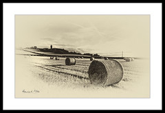 Of Days Gone By (RonnieLMills) Tags: nik silver efex vintage look feel old worn faded photo hay bales moate road scrabo tower
