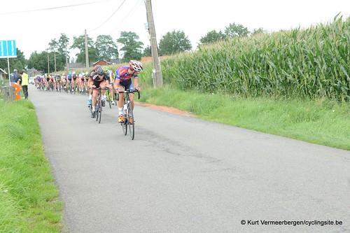 Omloop Vlaamse gewesten (150)
