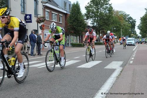 Omloop Vlaamse gewesten (410)