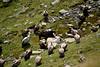 DSC_0264 (jrzurutuza) Tags: ibon lago astun ayous midi dossau pirineo