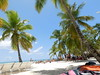 Dominican Republic 2017 (Rocco Visconti) Tags: puntacana dr dominican cominicanrepublic beach palms sun sky clouds palmtrees palmtree hut sand waves ocean punta cana saona saonaisland resort majesticcolonial travel photography vacation caribbean sailboat boat