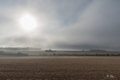 September (Di_Chap) Tags: france d750 fog brume champs