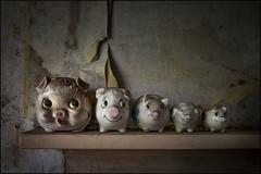 Five little pigs (ducatidave60) Tags: fuji fujifilm fujixt1 fujinonxf23mmf14 abandoned decay dereliction urbandecay urbex u