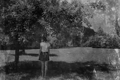 Julia (One-Basic-Of-Art) Tags: 1basicofart annewoyand woyand anne onebasicofart vintage look retro old girl frau woman feminine female weiblich girls kleid rock rücken back experimentell portrait person human mensch people nature outdoor äpfel apfel apfelbaum apple tree baum forest park julia tfp timeforprint timeforpicture zeitgegenabzügealtmühltal black white grau grey gris schwarz weis weiss noir blanc mono einfarbig monochrom monochrome melancholia melancholie nostagica nostalgie nostalgisch schatten shadow prohuman pro