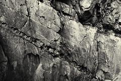 Neandertal. Limestone (wwwuppertal) Tags: neandertal neanderthal nrw nordrheinwestfalen northrhinewestphalia neandervalley niederbergischesland westdeutschland kalkstein limestone chalk steinbruch quarry limerock sw schwarzweis bw blackandwhite blancetnoir noiretblanc getont toned tonung toning monochrome monochrom