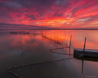My Dreamed Sunset VIII.
