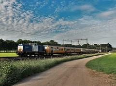 VR 203-5 + DM'90 3450+3451+3442 te Velp (erwin66101) Tags: ns volkerrail volker rail diesellocomotief diesel locomotief dm90 dm 90 buffel nijmegen station velp amersfoort syntus