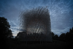 The Hive IV - Evening (MrBlueSky* (AWAY)) Tags: thehive hive design milanexpo kewgardens wolfgangbuttress royalbotanicgardens london aficionados pentax pentaxart pentaxlife pentaxk1 pentaxawards pentaxflickraward travel evening