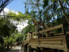 Puerto Rico National Guard (The National Guard) Tags: puerto rico pr prng roadways clear trees branches leaves hurricane irma disaster support emergency assistance assisting ng nationalguard national guard guardsman guardsmen soldiers soldier airmen airman us army air force united states america usa military troops 2017 mission vehicles