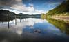 Loch Ard (robdonnelly) Tags: lochard aberfoyle scotland trossachs lochlomondandtrossachsnationalpark loch calm still reflection