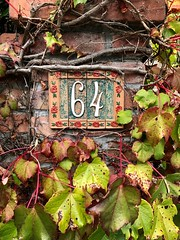 64 (skipmoore) Tags: millvalley 67 address ivy