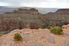"8H2_23750342 (kofatan (SS Tan) Tan Seow Shee) Tags: ""hualapai"" ""hwal bay nyu wa"" ""hoover dam"" zion ""grand canyon"" ""great salt lake"" usa ""guoano point"" montana ""kolob fillmore utah arizona titon"" ""yellow stone"" kofatan"