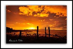 Morning Fire   [Explored] (RonnieLMills) Tags: sunrise dawn early morning fire rotten wooden posts jetty islandhill comber newtownards county down northern ireland explore explored 23917 8