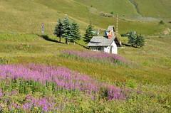 Col du Lautaret (RarOiseau) Tags: chapelle fleurs montagne paysage histoire monument eu paca hautesalpes coldulautaret parcnationaldesécrins v2000