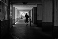 Lajos utca (Mathieu HENON) Tags: leica nokton m240 50mm voigtlander noirblanc monochrome blackwhite budapest hongrie hlm promenade lajos utca