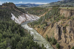 Looking up the Yellowstone River from Calcite Springs Overlook (Kᵉⁿ Lᵃⁿᵉ (Instagram: @CarShowShooter)) Tags: geo:lat=4490254000 geo:lon=11039272785 geotagged devilsden unitedstates usa adventure calcitespringsoverlook calciumcarbonate canyon cliff clouds exploring grandlooproad landscape lightray mineraldeposition mineraldeposits nationalpark nationalparkservice naturalwonder nature overlook pinetree rayoflight river scenic scenicview sky tourism touristattraction travel travelblog travelphotography travelingadventures usnationalpark usnationalparkservice unitedstatesnationalpark worldadventures worldtravel worldsfirstnationalpark wy wyoming yellowstone yellowstonecanyon yellowstonenationalpark yellowstonenp yellowstoneriver ynp