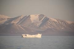 Baffin Island, Nunavut, Canada. (richard.mcmanus.) Tags: canada arctic baffinisland icebergs landscape mountains snow mcmanus