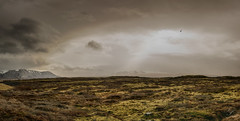 <dreamy Iceland (Schmidtchen Schleicher) Tags: cloudly dark orton landscape iceland sky wolken moos colours country ghost
