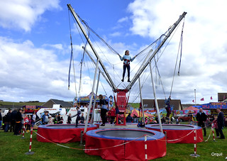 Jumping Fun At Orkney's County Show
