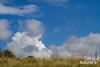 La Cotentin (Dicksy93) Tags: img9252 ciel sky nuage cloud prairie herbe paysage seascape landscape paisaje paesaggio landschaft landschap extérieur outdoor gr34 la cotentin planguenoual côtes darmor 22 breizh bzh bretagne brittany france europe dicksy93 canon eos 7d efs55250mm f456 is stm