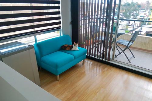 Lola in her Office