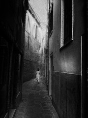 alone (www.streetphotography-berlin.com) Tags: tuscany italy city woman alone alley old houses street streetphotography streetlife blackandwhite blackwhite monochrome impressionist impressionism