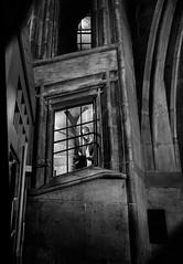 L'intrigue (krystinemoessner) Tags: bw bn sw monochrome berne photo de rue streetphoto street streetpassionaward krystine moessner taek