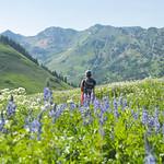 Hiking Through Natural Color thumbnail