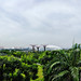 Singapore - Gardens by the Bay, Panorama