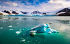 Smeerenburgbreen Svalbard (Kenneth Solfjeld) Tags: svalbard spitsbergen smeerenbergbreen glacier ice snow arctic albert land smeerenburg iceberg smeerenburgfjorden norway visitnorway beautifulnorway beautifullight isbre outdoors outdoor sea water