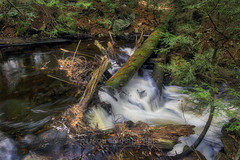Log Jam (from above), 2017.04.22 (Aaron Glenn Campbell) Tags: rgsp rickettsglen statepark dcnr fairmounttownship luzernecounty pennsylvania ganogaglen fallstrail stream outdoors nature cascades water motion blur optoutside spring 2017 3xp ±2ev hdr macphun aurorahdr2017 nikcollection colorefexpro viveza sony a6000 ilce6000 mirrorless sigma 19mmf28exdn primelens wideangle emount neewer ndfilter variable neutraldensity