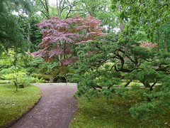 Clingendael Tuin (Elad283) Tags: holland haag hague thehague denhaag netherlands nederland clingendaeltuin garden japanesetuin clingendael japanese japan park