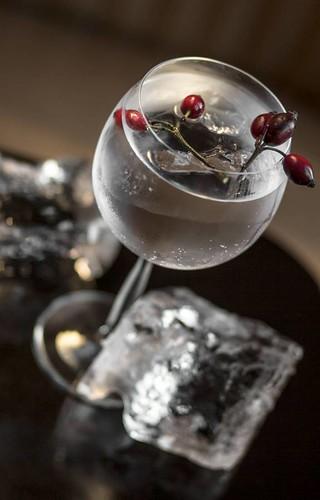 Monkey-47-Gin-and-Tonic-csipkebogyoval