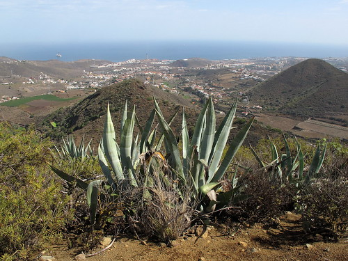 Gran Canaria_027