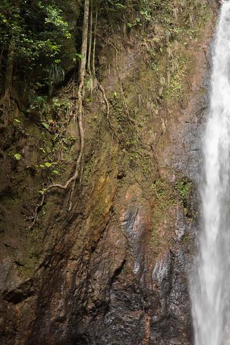 Wasserfall, Waitukubuli National Park, Dominica