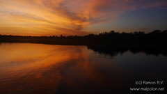 Dawn at Yellow river - Kakadu NP
