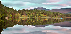 At One With The Loch Before Sunset.. (Imagine8 Photography) Tags: scotland scottish highlands scottishhighlands mountain cairngorms trees wood landscape imagine8photography autumn paddle paddleboarding amanda loch lochgarten colourful forest abernethyforest