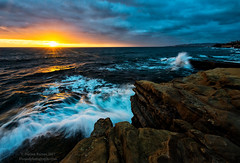 Sunset from Sunset Cliffs (Dwood Photography) Tags: sunset cliffs sunsetcliffs dwoodphotography dwoodphotographycom natural park sunsetcliffsnaturalpark landscape seascape blue yellow gold golden pacific ocean pacificocean from sunsetfromsunsetcliffs san diego california ca sandiego