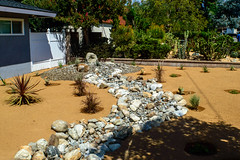 DLS Best Low Water Landscaping Desert Drought Tolerant Resistant Service in Rancho Cucamonga,Upland,Claremont CA (funny.pictures) Tags: landscape landscaping drought tolerant droughttolerant claremont claremontca claremontcalifornia dlslandscape dlslandscaping lowwater claremonthomes claremonthome claremonthouse claremonthouses inlandempire claremontlandscaping claremontlandscape