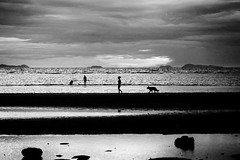 Walking on the beach with the dog - Koh-Samui - Thailand (Lior. L) Tags: walkingonthebeachwiththedogkohsamuithailand walkingonthebeach dog kohsamui thailand blackandwhite blackwhite island silhouettes people