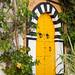 Traditional yellow door