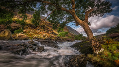 Rushing water... (Einir Wyn Leigh) Tags: landscape river water nature tree foliage autumn fall rural wales cymru outdoors mountains leaf plants flowers colorful clouds blue green gold
