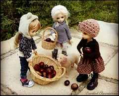 September harvest .... (Essential Resinescence) Tags: poupee doll bjd resin fairyland souldoll bewithyou littlefee ante ranbi yosd