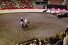 Riders in the Ring (pokoroto) Tags: riders ring people calgarystampede calgary カルガリー アルバータ州 alberta canada カナダ 7月 七月 文月 shichigatsu fumizuki bookmonth 2017 平成29年 summer july