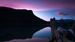 As I am as much a part of nature, as nature is a part of me. (Brendinni) Tags: rattlesnakelake sunsetglow longexposure ndfilter stumps ancient lake reflection rodinthethinker trees silhouette clouds cloudporn pnw pnwcollective weather blue purple transparent nature part mountains mountain ridge