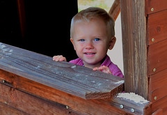 In the Cubby House (Clare-White) Tags: kid boy looking eyes wooden inside portrait challengefactorywinner