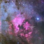 Nebulosa Norteamerica y Deneb thumbnail